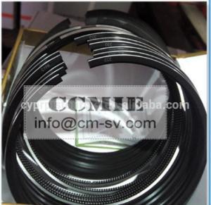 WEICHAI SINOTRUK WD615 EURO III / CLASSIC PISTON RING , VG1540030005 Manufactures