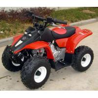 Buy cheap 50cc Kids ATV AJ50-4 from wholesalers