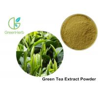 China Food Additives Green Tea Extract Powder 98% Polyphenols 80% Catechins on sale