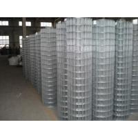 """Buy cheap welded wire mesh 1""""X1"""",2""""x1"""" from wholesalers"""