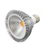 PAR30 led light COB 12W Manufactures