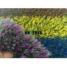 Coloured Artificial Grass For Garden Playground Kindergarten Custom Natural Manufactures