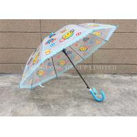 Customized Clear Long Umbrella , Transparent Dome Umbrella With Lace Edge Manufactures