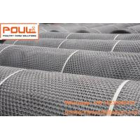 Buy cheap Poultry Chicken Farm Fence Net  White PE Plastic Floor Wire Mesh & Fence Mesh for Broiler Ground Raising System from wholesalers