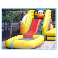2014 Hot Sale Inflatable Water Slide N Slip (CY-M2138) Manufactures