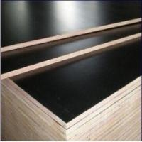 FULL Poplar core Black and Brown Film Faced Plywood Shuttering Marine Plywood Manufactures