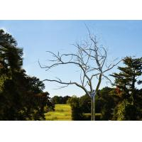 Quality Stainless Steel Tree Sculpture Withered , Outdoor Metal Tree Sculpture Garden for sale