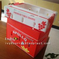 China Custom printing corrugated packaging boxes plastic vegetables fruit box on sale