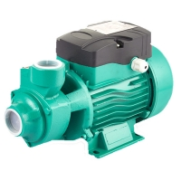 Best Price 1 Inch 220 Volt Qb Qb60 0.5 Hp 0.75hp 1hp Rate Domestic Garden Electric Motor Vortex Water Pump For House Manufactures