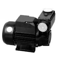 Quality TPS  Series Domestic Water Pumps Precision Casting Motor Housing 1HP / 0.75KW for sale
