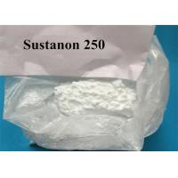 Four Different Esters Fat Stripping Steroids / Sustanon 250 Steroids To Cut Fat Manufactures