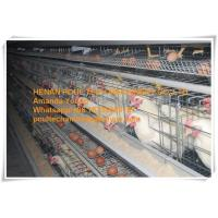 Silver Galvanized Steel Cage Battery Layer Breeder Chicken Cage/Coop for Poultry Farming Manufactures