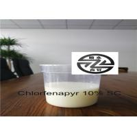 6-8 PH Phantom Liquid Insecticide CAS 122453-73-0 Limited Systemic Activity Manufactures