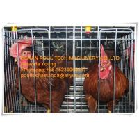 Silver Galvanized Steel Cage Battery Cage/Coop Layer Breeder Chicken Cage/Coop for Poultry&Livestock Farming Manufactures