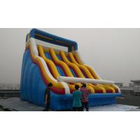 Giant Inflatable Slides Inflatable Water Slides For Adults Manufactures