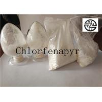 Off - White Powder Agriculture Insecticide High Purity 98% TC Chlorfenapyr Manufactures