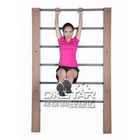 outdoor exercise equipments WPC materials based wall bars gymnastic bars for sale Manufactures