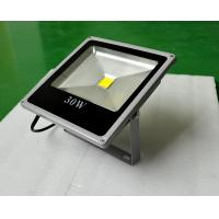 Waterproof led floodlight AC100-240V high quality good price Manufactures