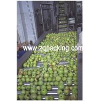 Quality apple juice concentrate production line for sale