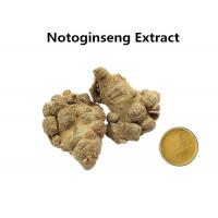 10% Sanchinosides NotoginsengExtract Powder , Natural Herbal Extracts Anti - Atherosclerosis Manufactures