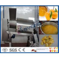 Stainless Steel Mango Processing Plant With Double Stage Pulper 5T Per Hour Manufactures