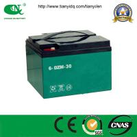 China Factory Price Sealed Lead Acid 48V65ah Battery for Electric Vehicle on sale