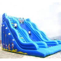 Giant0.45+0.55 MM Pvc Tarpaulin Inflatable Slide For Childern In Outdoor / Intdoor With Pool Manufactures