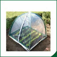 PVC coated Garden tunnel greenhouse Home Garden Mini Greenhouse Warm Houses For Growing Trees Manufactures