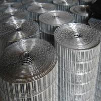 electric galvanized welded wire mesh Manufactures