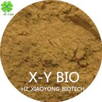 Tea Seed Meal Manufactures