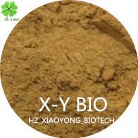 Tea Seed Powder Manufactures
