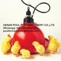 Quality Red Orange Automatic Plasson Chicken Drinker for Poultry Farm for Chicken Deep Litter System(Plastic) for sale