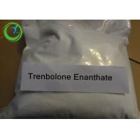 Injectable Trenbolone Steroid Enanthate for bodybuilding 100mg/ml 472-61-5 Manufactures