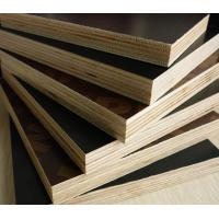 4*8feet cheap film faced laminated plywood in china for struction and building / phenolic  / WBPpoplar and birch board Manufactures