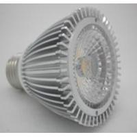 COB PAR20 8W LED light Manufactures