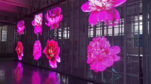 Full Color 16 Bit RGB SMD1921 P3.91 Transparent LED Mesh Screen Manufactures