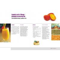 Pineapple Juice Production Pineapple Processing Line For Pineapple Fruit Juice Manufactures