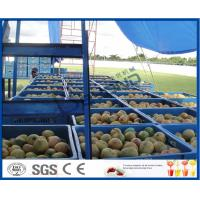 Fresh Pineapple / Mango Juice Processing Plant With Can Packaging Machine Manufactures