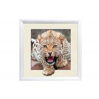 5D House decorative Picture 3D Lenticular Printing Service CMYK Offset Printing Manufactures