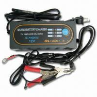 1.6A to 12V DC Charger with 100/230V AC Input Voltage and 4A Output Current Manufactures