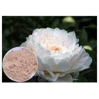 Skin Care Peony Root Extract Insoluble In Water , Paeonia Lactiflora Root Extract Powder Manufactures