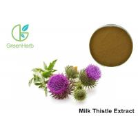 Milk Thistle Natural Plant Extracts 80% Silymarin For Liver Protecting Manufactures