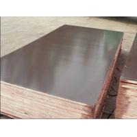 Brown Film Faced Plywood With Poplar Core Manufactures