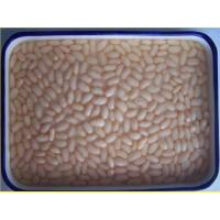 Quality Canned White Kidney Bean for sale