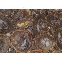 Dark Color Petrified Wood Slab , Natural Stone Slabs For Round Tabletop Manufactures