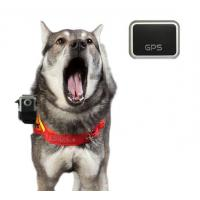 Dog Camera Vest with 16MP HD 1080p GPS Waterproof Stealth Camera (HDV-560) Manufactures