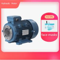 Hollow Shaft Hydraulic Electric Motor Aluminum Housing With Free Gifts Face Mask Manufactures