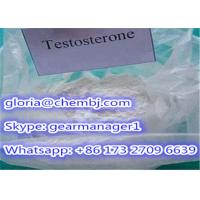 98% Min Synthetic Testosterone Anabolic Steroid Powder Testosterone CAS 58-22-0 Manufactures