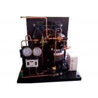 ZB21KQE-TDF 3HP Indoor Air Cooled Condensing Unit Wide Application For Display Cabinet Refrigerator Manufactures