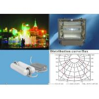 Energy Saving/Induction Light Manufactures